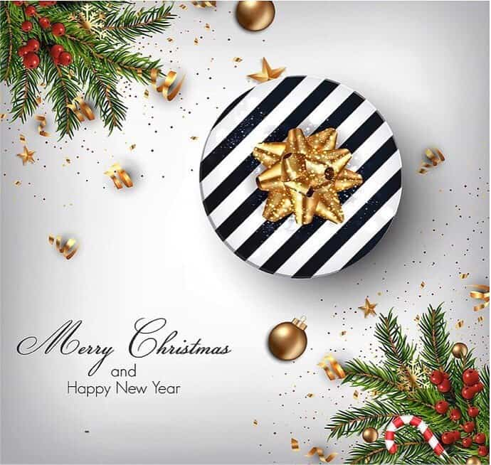 wish you a merry christmas and happy new year